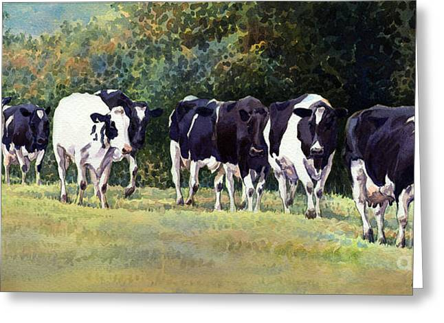 Cow Trail Greeting Card by Anthony Forster
