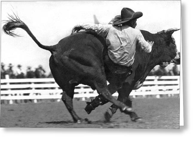Cowboy Falling  From Bull Greeting Card by Underwood Archives