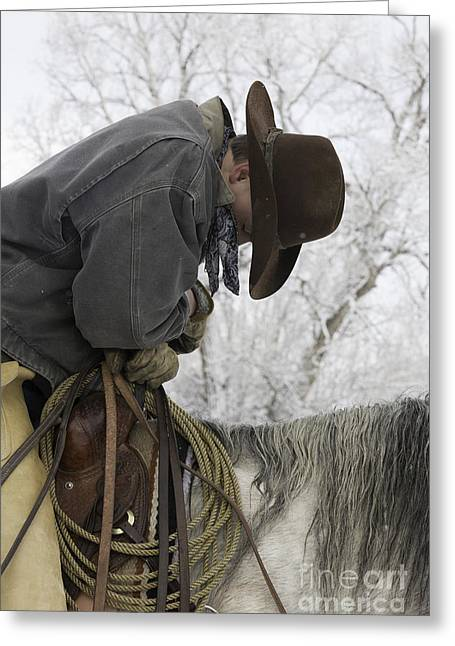 Cowboy Sleeps In The Saddle Greeting Card by Carol Walker