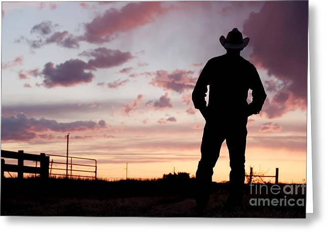 Cowboy Sunset Greeting Card by Cindy Singleton