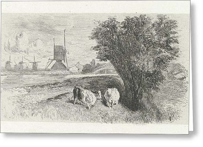 Cows At A Road, Charles Rochussen Greeting Card by Charles Rochussen