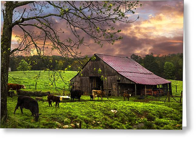 Cows At The Barn Greeting Card by Debra and Dave Vanderlaan