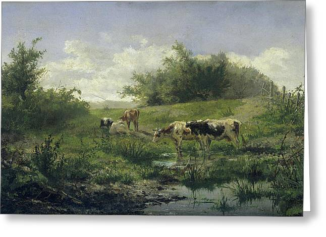 Cows In A Puddle, Gerard Bilders Greeting Card by Litz Collection