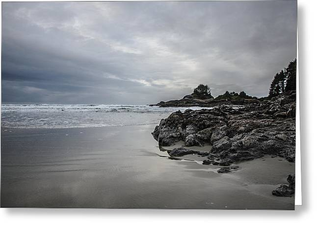 Cox Bay Afternoon  Greeting Card by Roxy Hurtubise