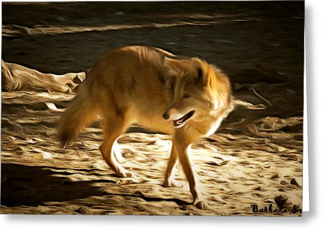 Coyote Greeting Card by Barbara Snyder