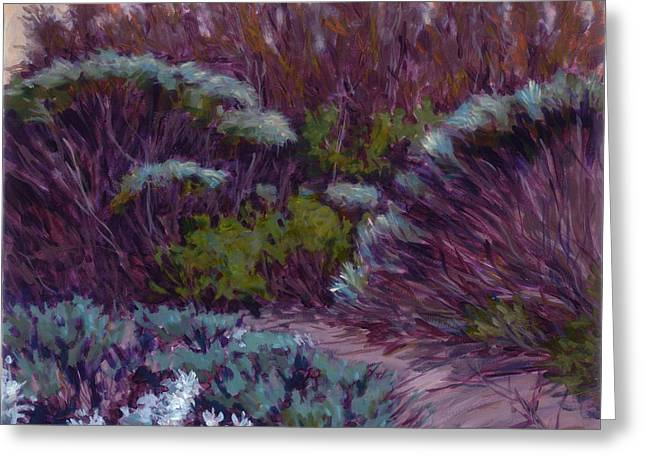 Coyote Brush And Willows Greeting Card