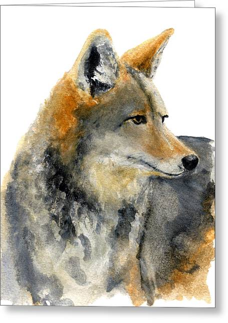 Coyote Greeting Card by Carlo Ghirardelli