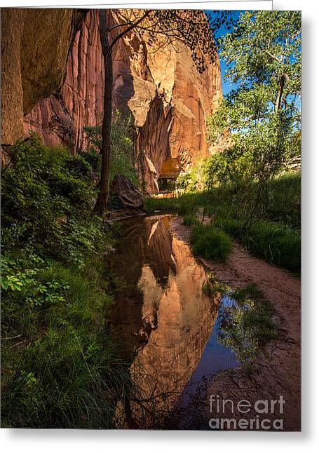 Coyote Gulch Canyon Reflection - Utah Greeting Card by Gary Whitton