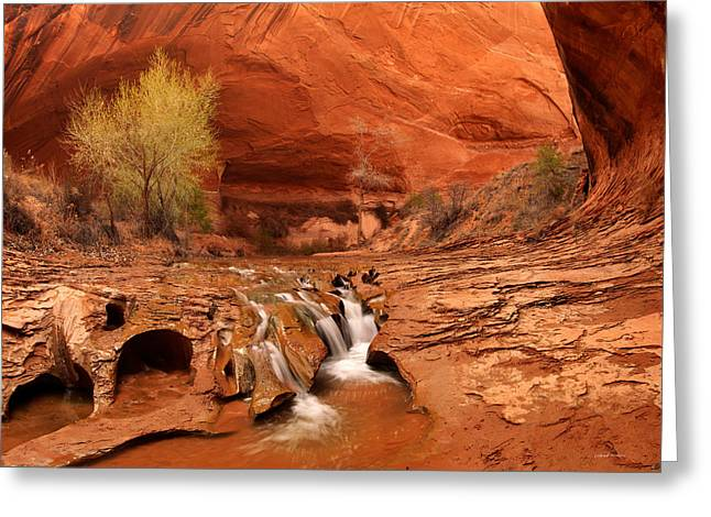Coyote Gulch Texture Greeting Card by Leland D Howard