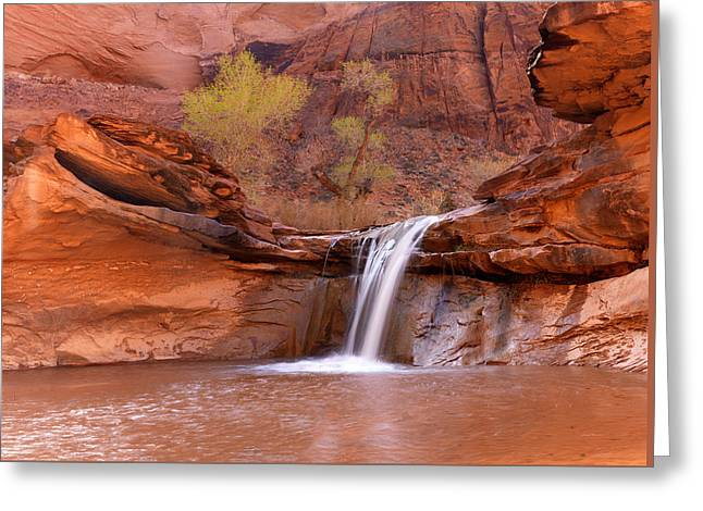 Coyote Gulch Waterfall Greeting Card by Leland D Howard