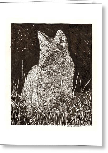 Coyote Night Hunting Greeting Card