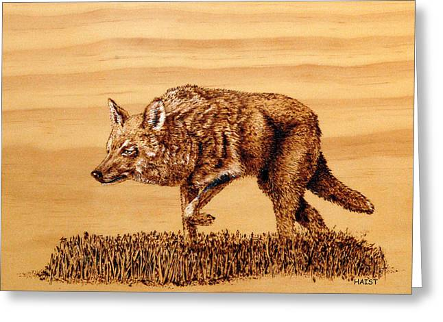 Coyote Greeting Card by Ron Haist