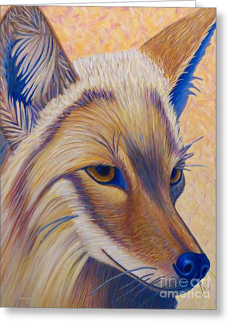 Coyote Summer Greeting Card