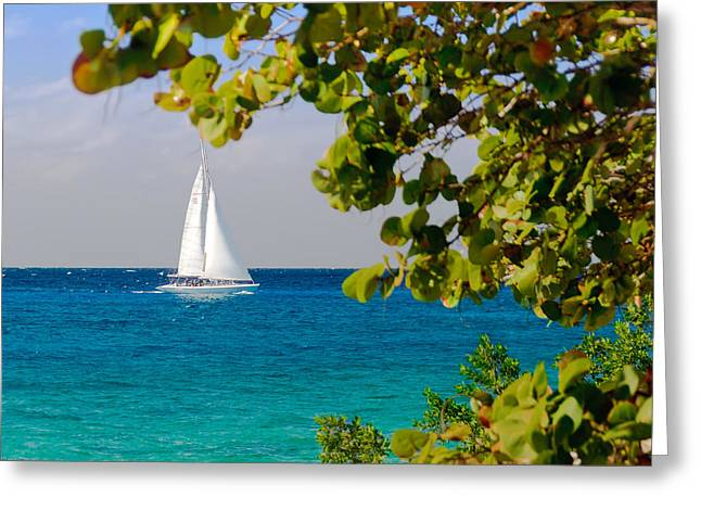 Cozumel Sailboat Greeting Card by Mitchell R Grosky