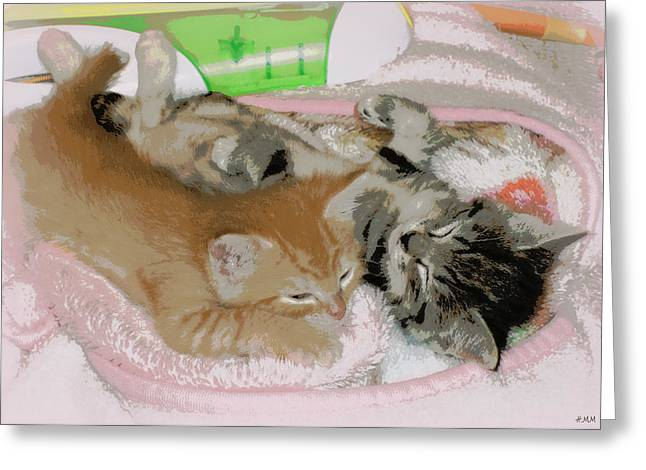 Cozy Kittens Greeting Card