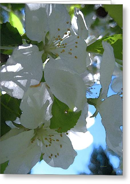 Crabapple Day Greeting Card by Kathy Bassett