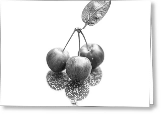 Crabapple Monochrome Greeting Card