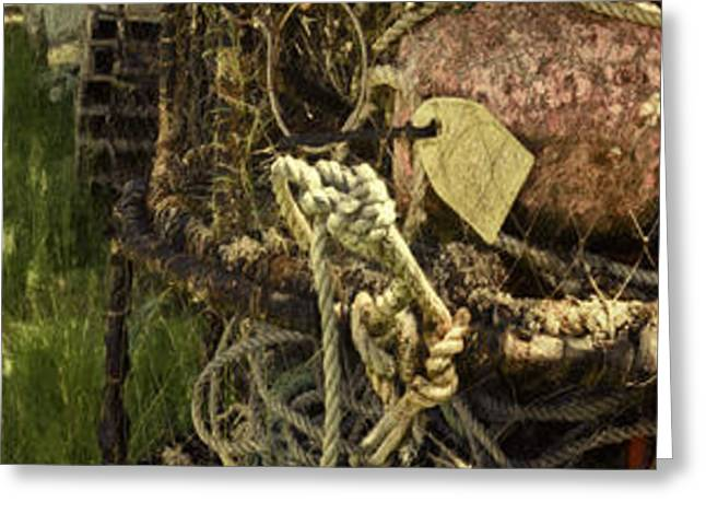 Crabbing Relics Greeting Card by Jean OKeeffe Macro Abundance Art