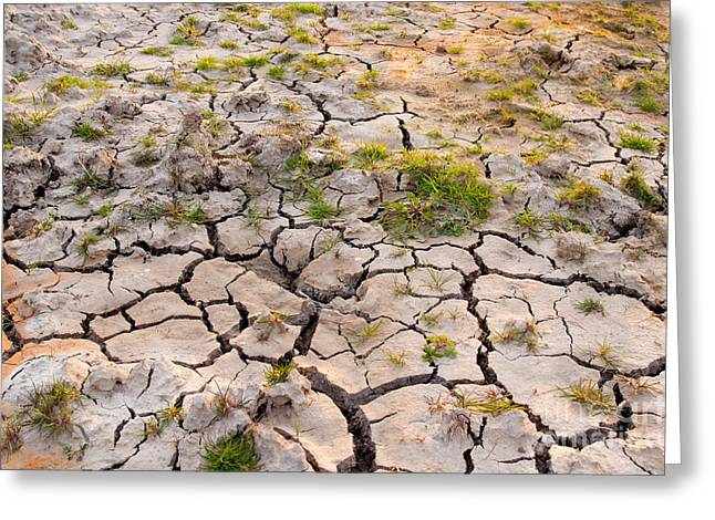 Cracked Earth Greeting Card