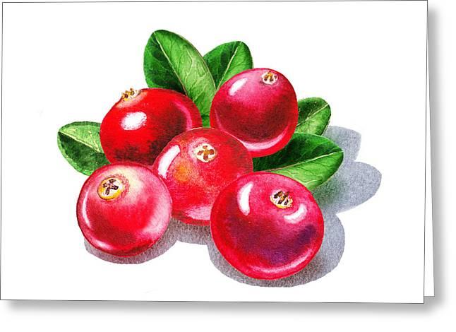 Cranberries Greeting Card by Irina Sztukowski