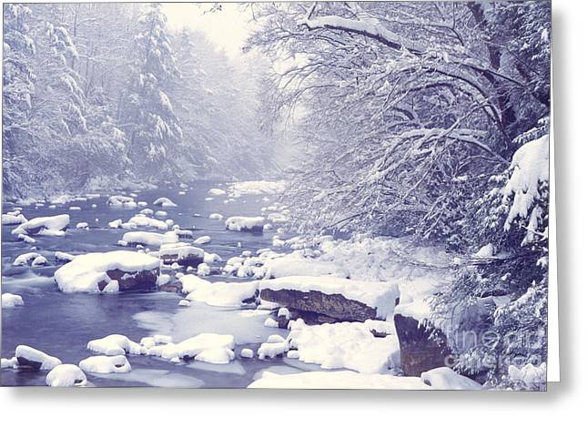 Cranberry River Heavy Snow Greeting Card by Thomas R Fletcher