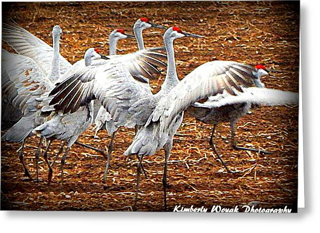 Crane Ballet  Greeting Card