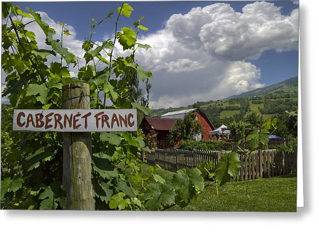 Crane Creek Vineyard Greeting Card