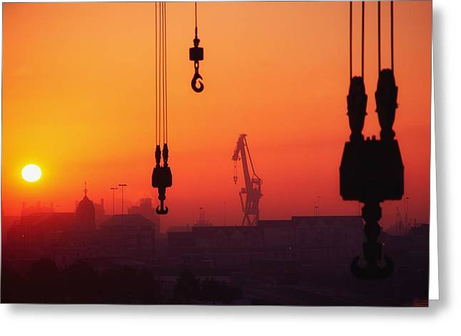 Cranes At Sunset Greeting Card by The Irish Image Collection