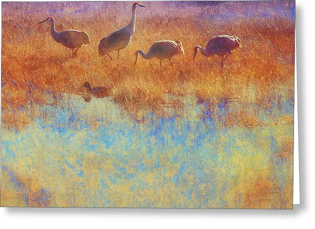 Cranes In Soft Mist Greeting Card