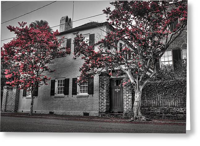 Crape Myrtles In Historic Downtown Charleston 1 Greeting Card