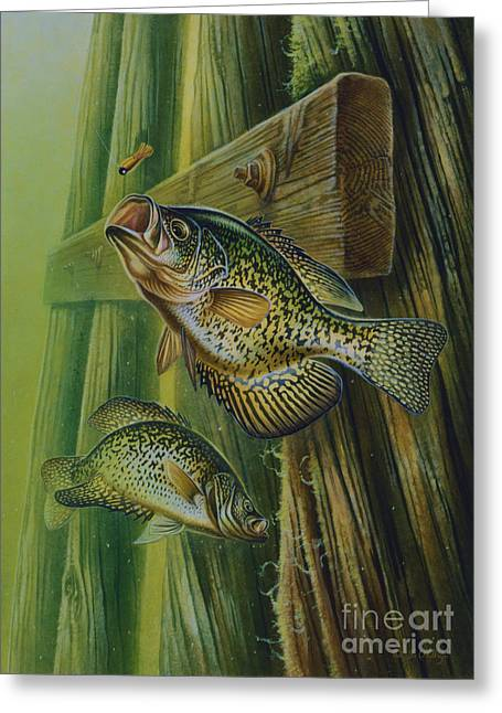 Crappie And Bridge Support Greeting Card by Jon Q Wright