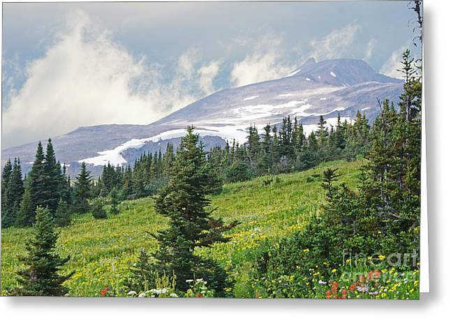 Crater Lake Trail Greeting Card by Stanza Widen