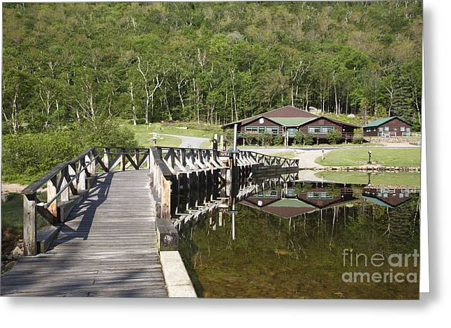 Crawford Notch State Park - White Mountains Nh Usa Greeting Card by Erin Paul Donovan