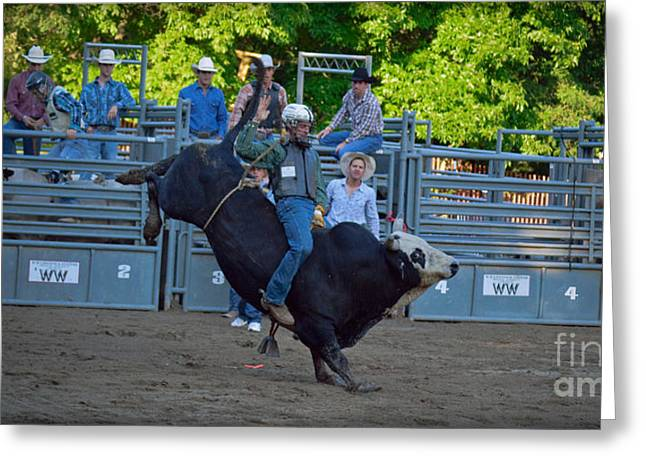 Crazy Bull Rider Greeting Card by Gary Keesler