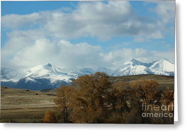 Crazy Mountains 3 Greeting Card by Brenda Henley