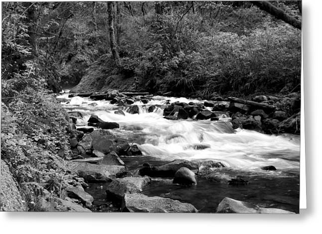 Creek At Bridal Falls Greeting Card by John Winner