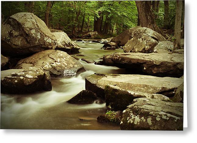 Creek At St. Peters Greeting Card by Michael Porchik