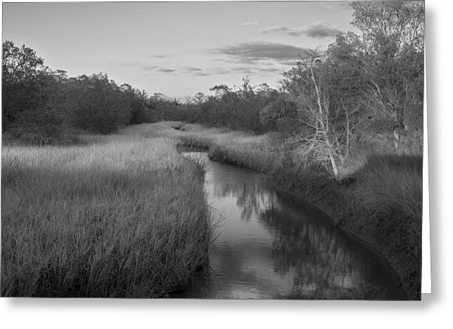 Greeting Card featuring the photograph Creek At Wilmington Island by Frank Bright