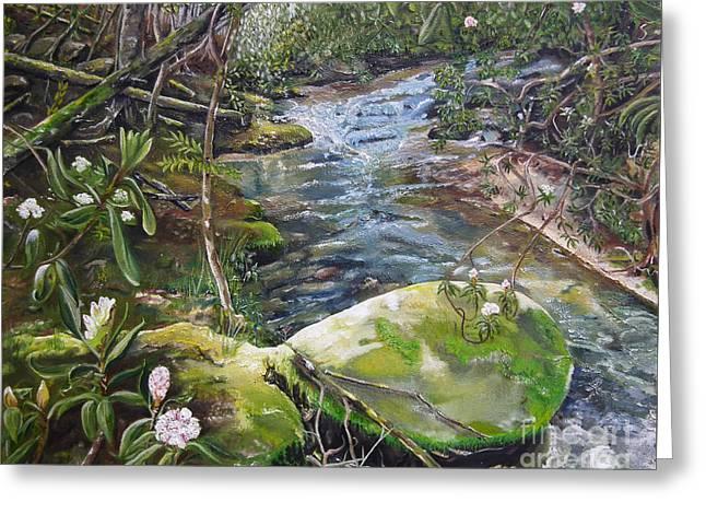 Creek -  Beyond The Rock - Mountaintown Creek  Greeting Card by Jan Dappen