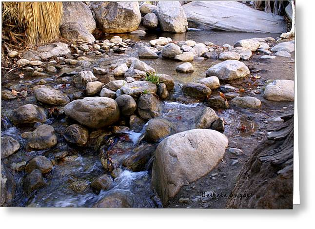 Creek Bottom Brook Greeting Card