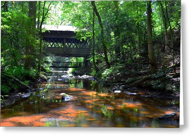 Creek Bridge Greeting Card by Bob Jackson