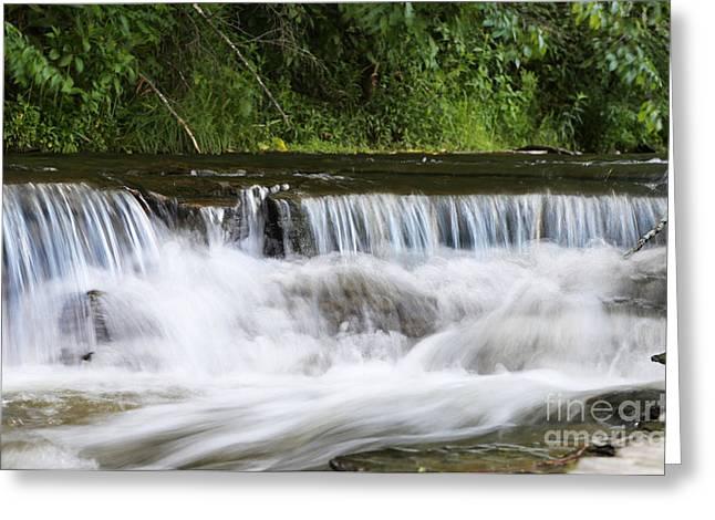 Creek Falls Greeting Card by Suzi Nelson