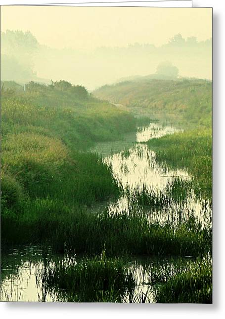 Creek I Greeting Card