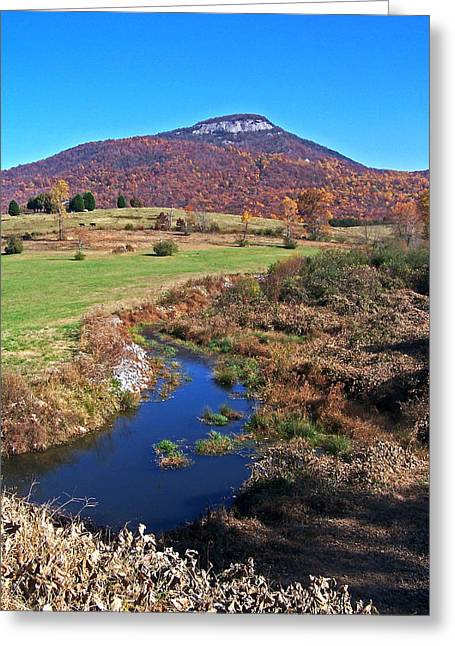 Creek In The Valley Greeting Card