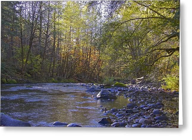 Creek Of Native Times Greeting Card by Tim Rice