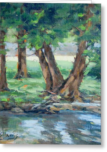 Creek Reflections Greeting Card by Sandra Harris