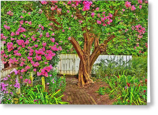 Greeting Card featuring the photograph Crepe Myrtle In Wiliamsburg Garden by Jerry Gammon