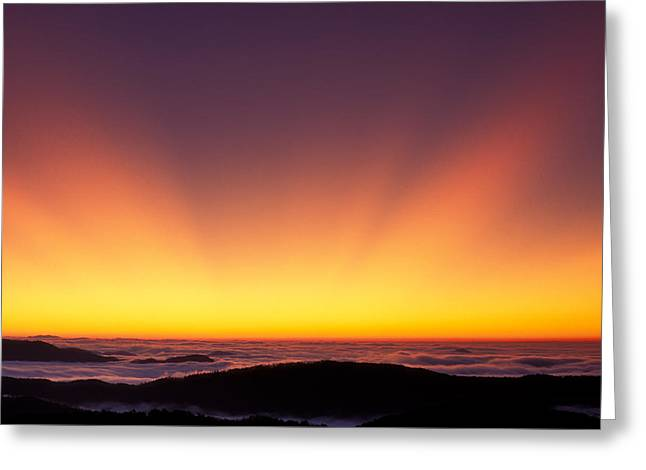 Crepuscular Rays In Nantahala National Forest Greeting Card