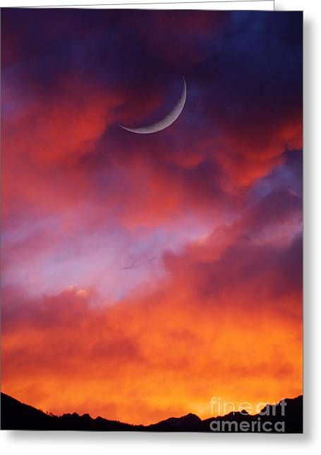 Greeting Card featuring the photograph Crescent Moon In Purple by Joseph J Stevens