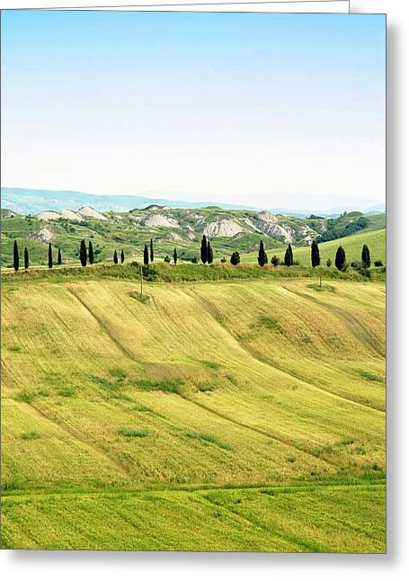 Crete Senesi Area, Near Asciano, Siena Greeting Card
